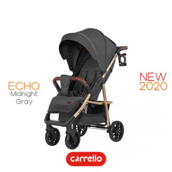 Прогулянковий візок CARRELLO Echo CRL-8508/1 (серія - GOLD 2020)